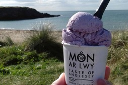 Dairy ice cream Wales